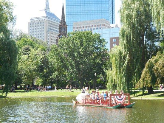 Bridge Swan Boats Picture Of Boston Public Garden