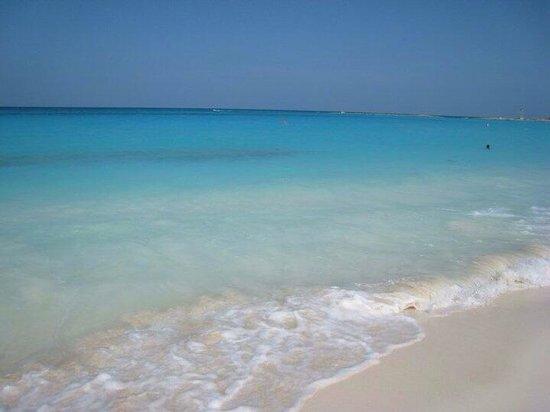 Sun Palace: Best beach area on the strip!
