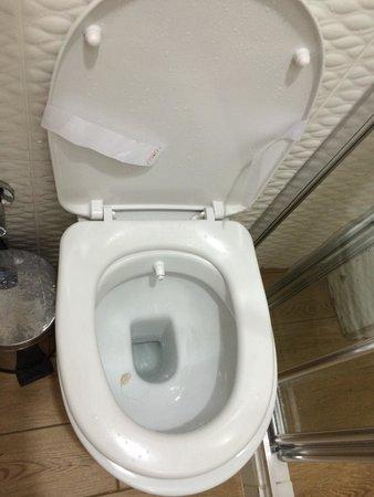 Hurriyet Hotel: 'Sanitzed' toilet.