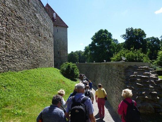 Ayuntamiento: Tallin Old Town Walls (3)