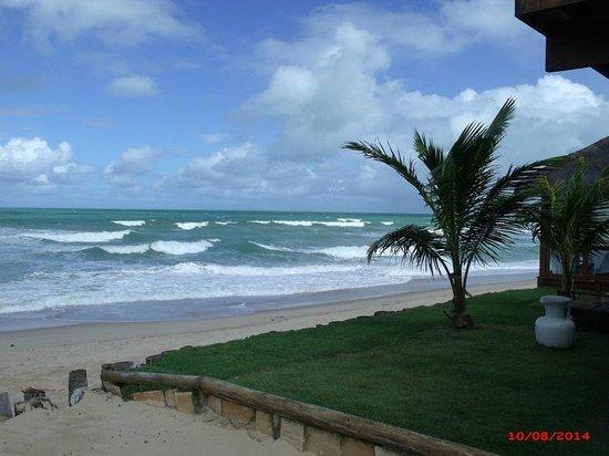 Porto de Galinhas Praia Hotel: Banco de madeira e área gramada próxima à praia