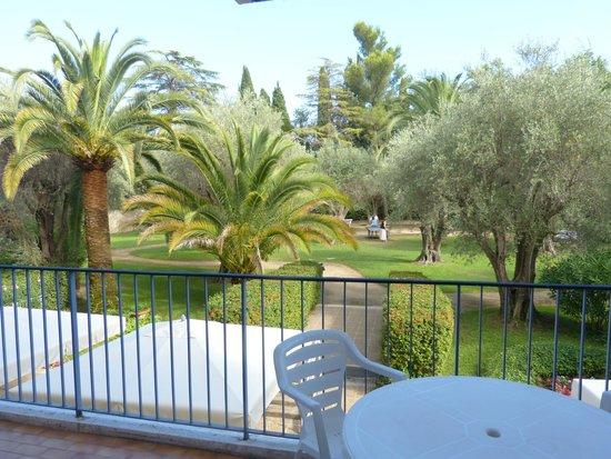Les Agapanthes: garden