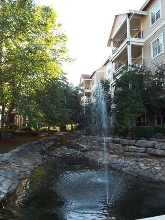Wyndham Branson at The Meadows : view from balcony in rear of complex