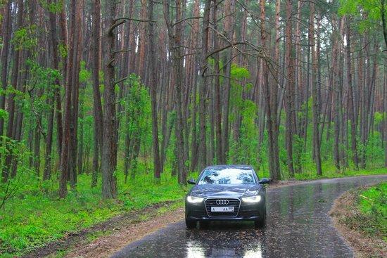 Curonian Spit / Kursiu Nerija National Park : AAA99RUS