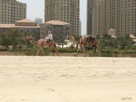 The Ritz-Carlton, Dubai: Strand
