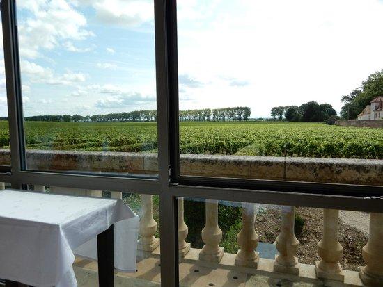 Restaurant Christophe Quéant : Vista dalla terrazza vetrata