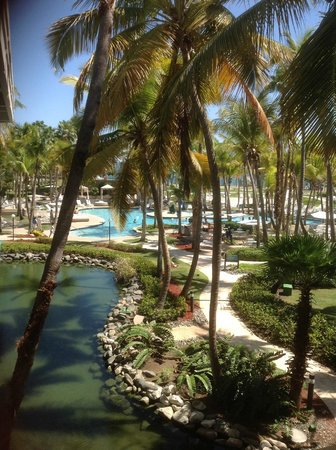 Hilton Ponce Golf & Casino Resort: Beautiful scenery