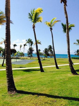 Hilton Ponce Golf & Casino Resort: Photos from our hotel