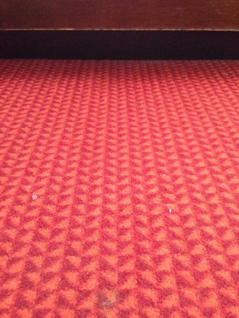 The Condado Plaza Hilton: Carpet in the room