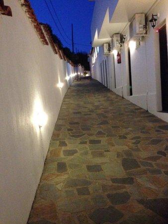 Villa Apollon Skiathos: Pretty pathway to pool and bar