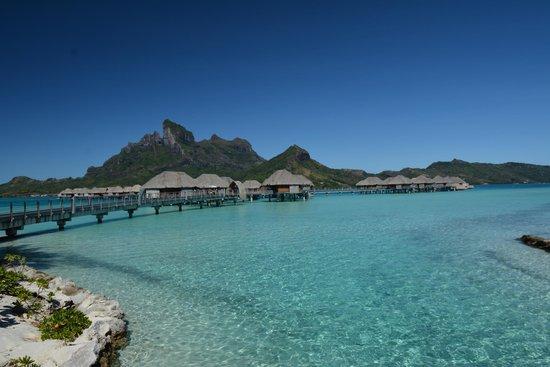 Four Seasons Resort Bora Bora: vista degli Overwater dal centro del Resort