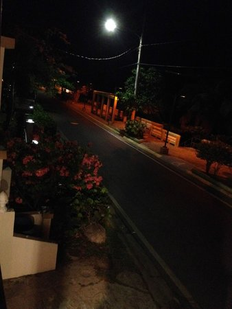 The Trade Winds Guesthouse & Restaurant: view at dinner