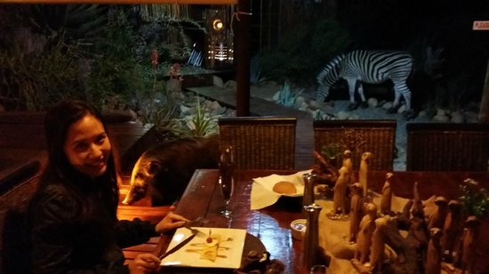 Zwartberg View Mountain Lodge : Dinner with Zebras and Celeste (African Bush Pig)