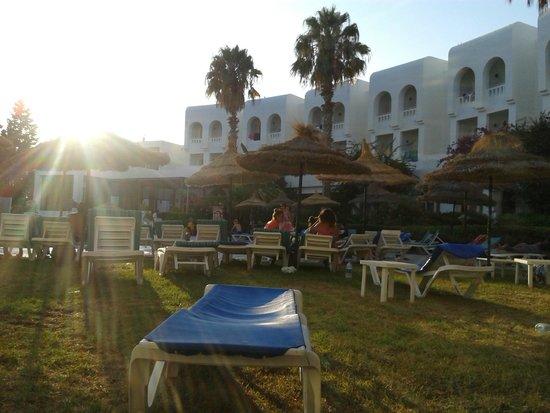 Hotel Menara: vue près de la piscine