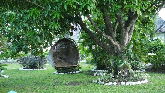 Royal Decameron Club Caribbean : garden