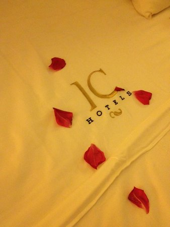 IC Hotels Airport: Rose petals everywhere, such attention!!