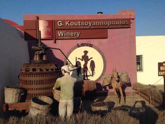 Wine Museum Koutsoyannopoulos: Вход
