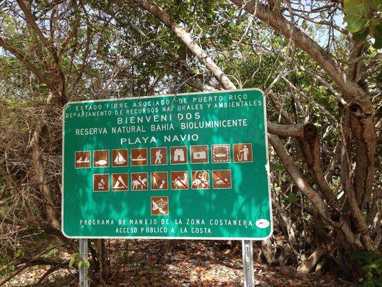 Navío Beach: Navio