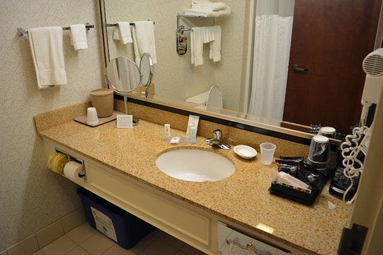 Comfort Inn & Suites Near Burke Mountain: Washroom