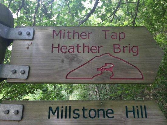Bennachie Hill Walks: Starting point signs