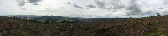 Bennachie Hill Walks: Landscape
