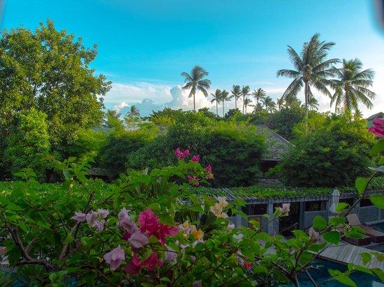 Deva Samui Resort & Spa: Deva Resort & Spa Koh Samui的425號房的陽台VIEW