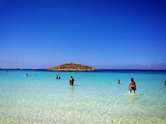 Playa de Ses Illetes: Fantastica