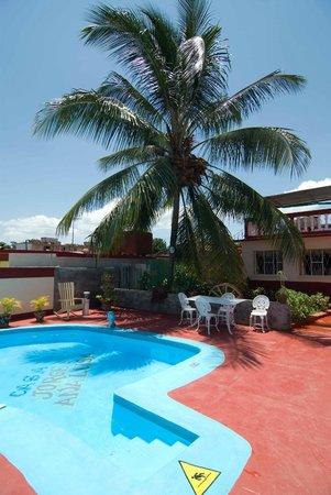 Villa Jorge y Ana Luisa: Pool area