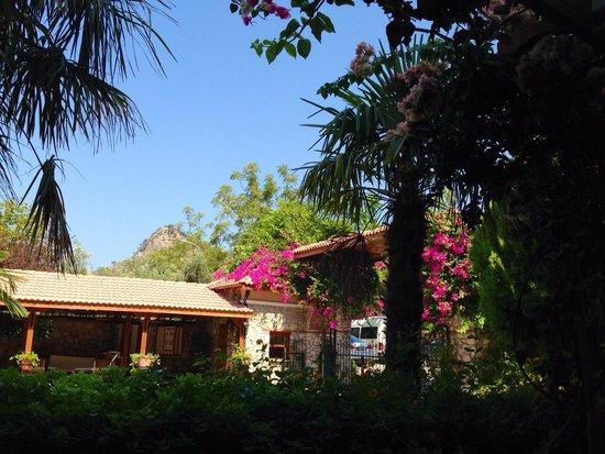 Perdikia Beach Hotel: Perfect