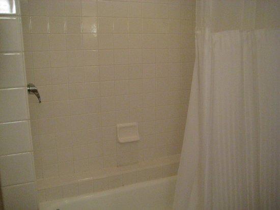 Rimrock Resort Hotel: Shower and tub