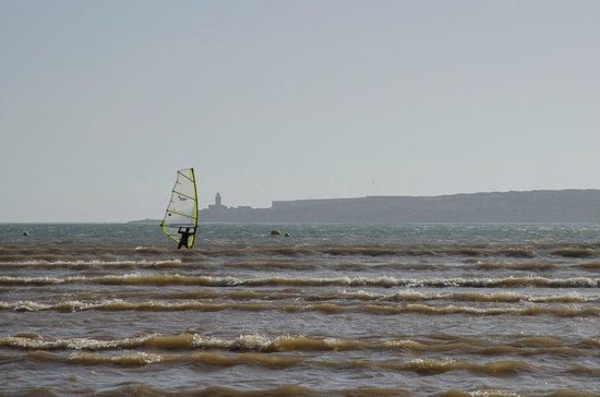 Beach and Friends: Windsurfer
