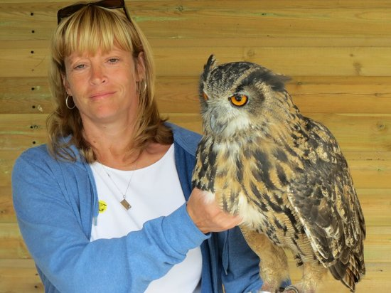 Screech Owl Sanctuary: Saphira the eagle owl. Heavy!