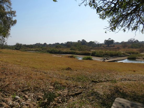 Dulini River Lodge : View from Room 2