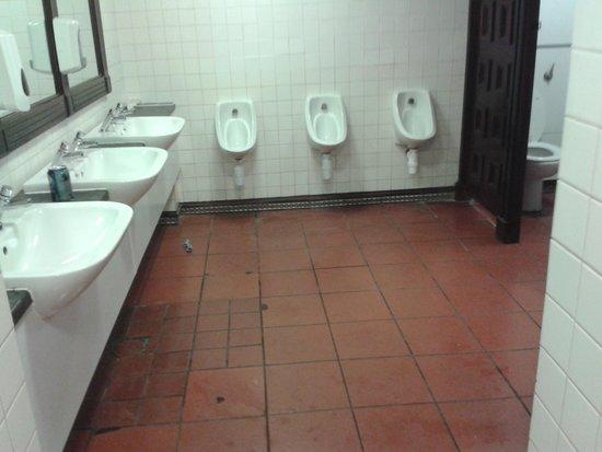 Europa Gatwick Hotel : dirty toilets