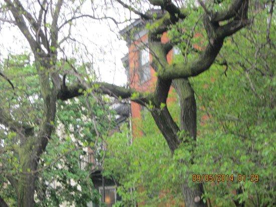 Brooklyn Heights Promenade: 7