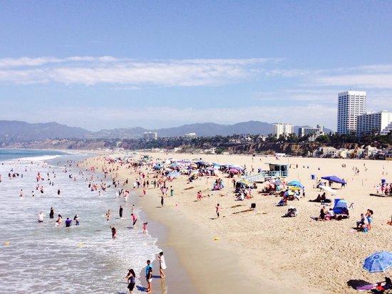Santa Monica Beach: Meravigliosa!!!!