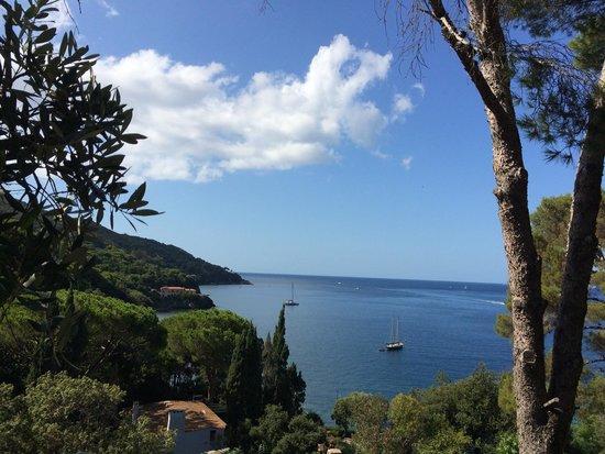 Hotel Tamerici : La costa è magnifica