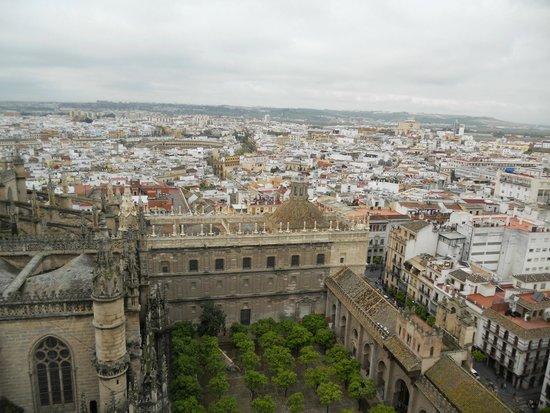 Torre Giralda : vue d'en haut