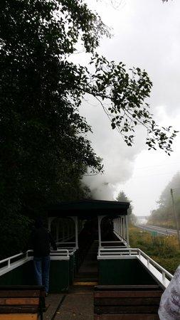 Oregon Coast Scenic Railroad: Vew from uncovered car