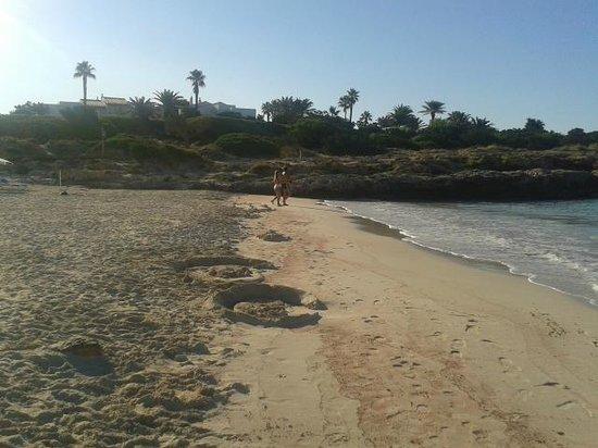 Mar Hotels Paradise Club & Spa: Playa