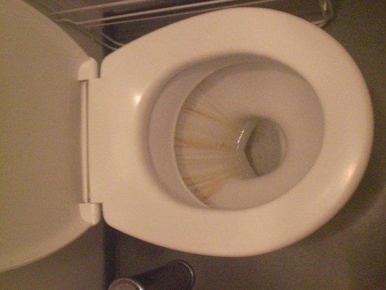Madame Vacances Residence Les Consuls de la Mer: toilettes à notre arrivée, tâches irrécupérables?