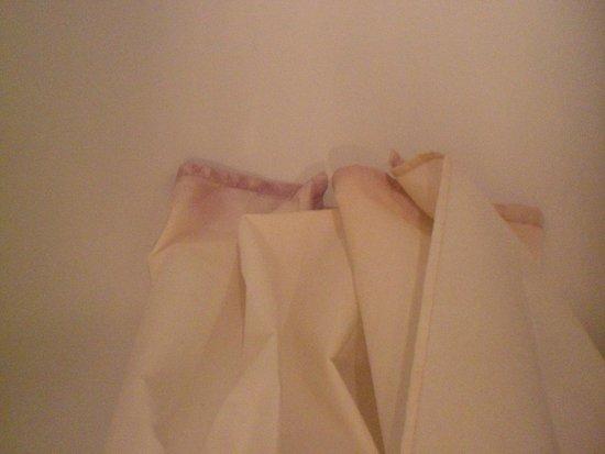 Madame Vacances Residence Les Consuls de la Mer: rideau de douche décoloré, moisi
