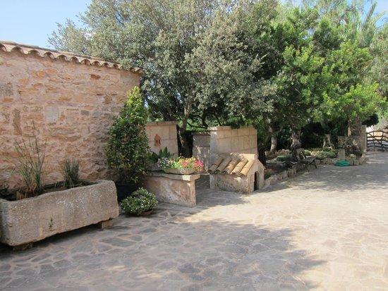 Sa Carrotja, Finca d'Agroturisme: Fincagelände