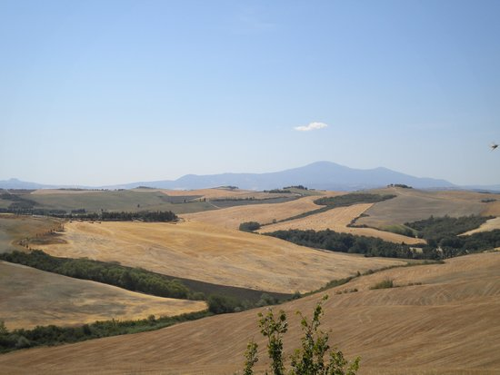 Podere Ampella: View from terrace