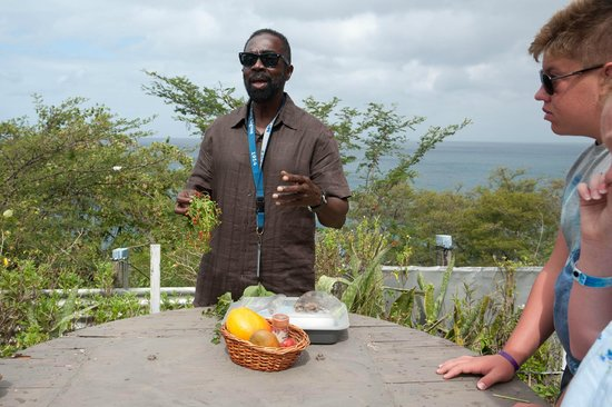 Island Paradise Tours: Rosevelt explains various herbs and seeds