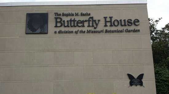 Sachs Butterfly House : Butterfly House