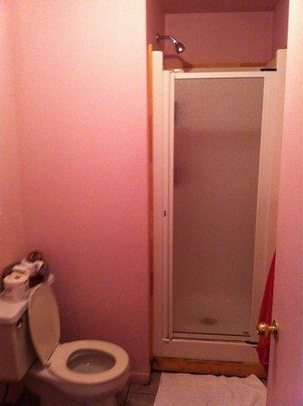 """La Maison Gauthier : Salle de bains, chambre familiale 5pers (""""Camélia"""")"""