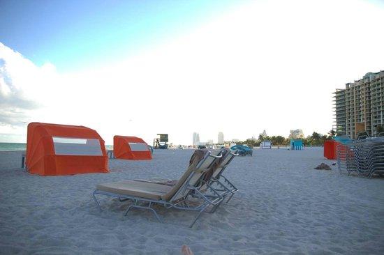 Royal Palm South Beach Miami, A Tribute Portfolio Resort: The beach