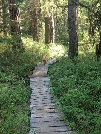 Minam River Lodge : Trail to the wood fired hot tub.