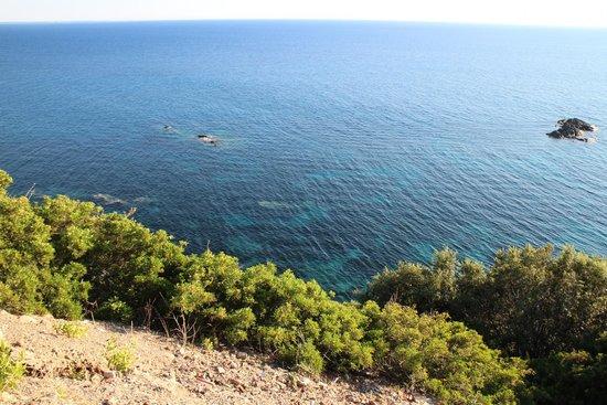 Da Angiolina: View